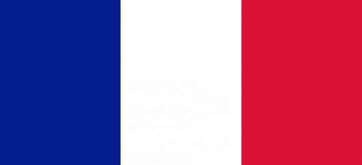 الرئاسة الفرنسية: طرد حارس ماكرون الشخصي لضربه متظاهرا