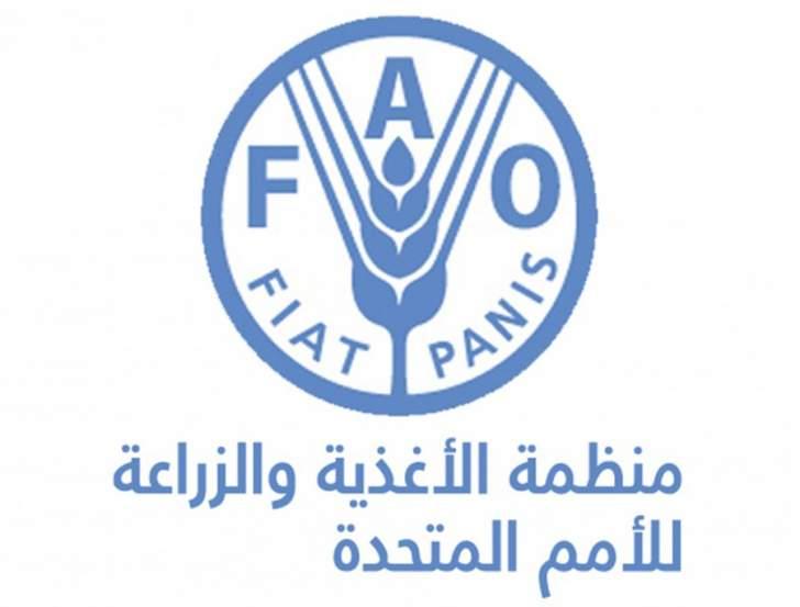 """""""الفاو"""": العراق خسر 40 بالمائة من إنتاجه الزراعي جراء الحرب ضد """"داعش"""""""