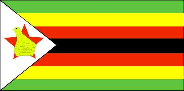 وزير العدل بزيمبابوي يعلن ارجاء تنصيب رئيس البلاد الفائر بعد دعوى قضائية بحقه