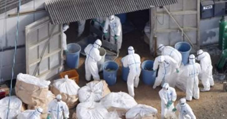 الصحة العالمية: نشاط الإنفلونزا لا يزال مرتفعًا بالمنطقة المعتدلة لنصف الكرة الشمالي