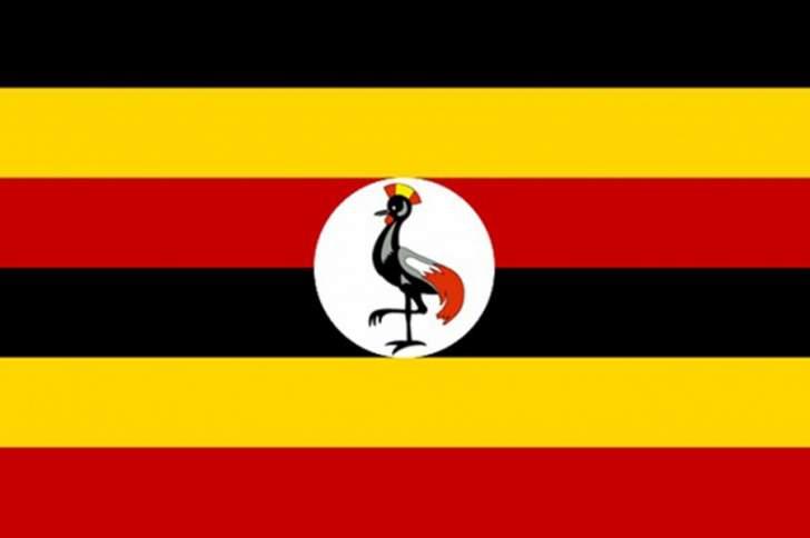 رويترز: مقتل 31 شخصاً بانهيار أرضيناجم عن أمطار غزيرة شرق أوغندا