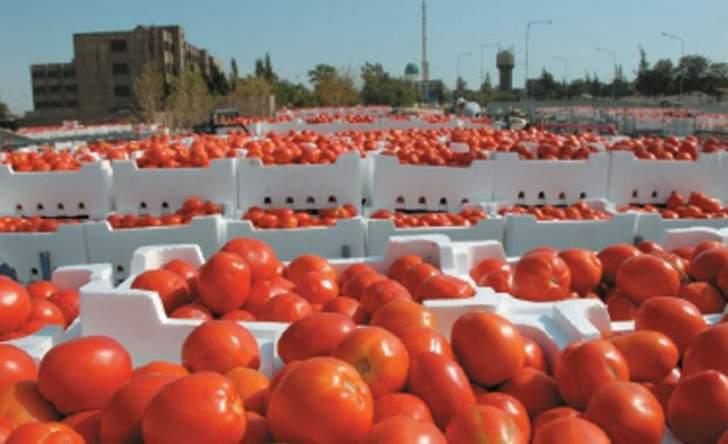 توقيف شاحنة على طريق بر الياس تحمل أكثر من 400 كيلو من البندورة