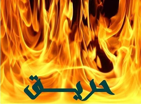 الدفاع المدني في دبي يخلي 2200 طالب من مدرسة بعد اندلاع حريق فيها