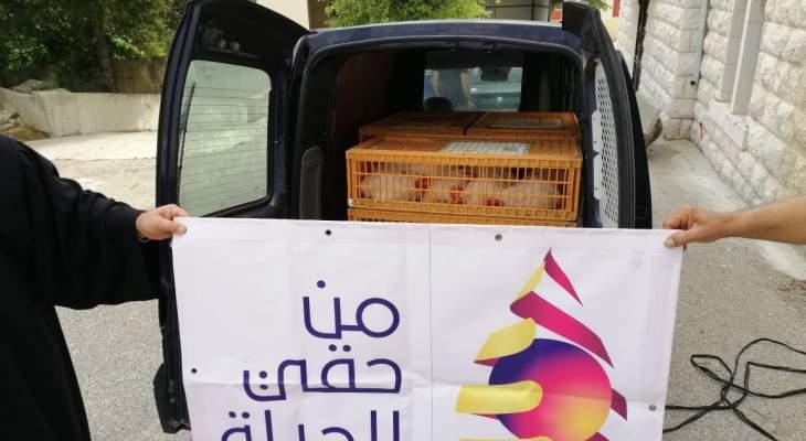 جمعية من حقّي الحياة تقدم 120 دجاجة بيّاضة في بلدة الكفور بالنبطية