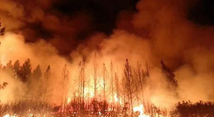 الحرائق بغابات سيدني الأسترالية تبلغ ذروتها