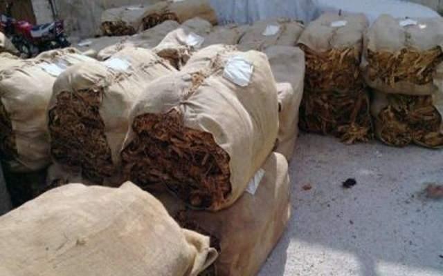 مزارعو التبغ بعيترون: لتسليم المبالغ المدفوعة الى مستحقيها نقدا