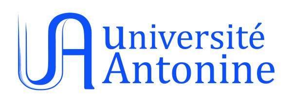 الجامعة الأنطونية نظمت ندوة رقمية تناولت حرية الصحافة وحق الجمهور بالمعرفة