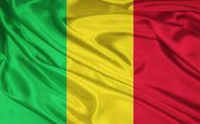 روسيا اليوم: مقتل 10 عسكريين في مالي جراء هجوم إرهابي