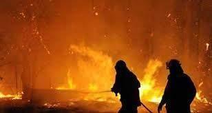 مساع لإخماد حريق في حرج صنوبر وسنديان في خراج بينو