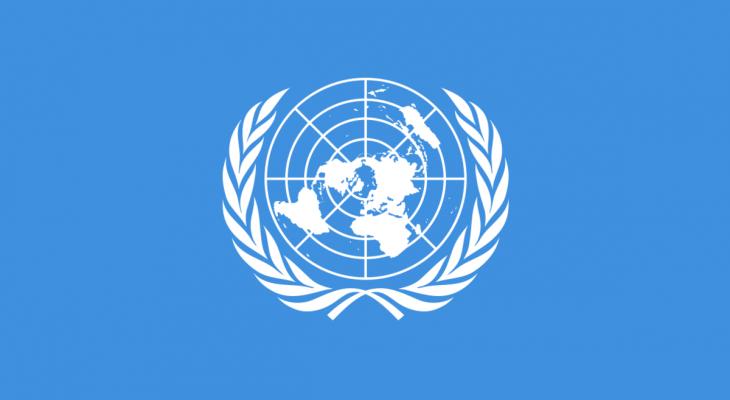 الأمم المتحدة: سوريا شهدت نموا في المحاصيل عام 2019