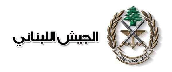 الجيش حذر من استخدام الطائرات المسيرة في المناطق اللبنانية كافة حتى إشعار آخر