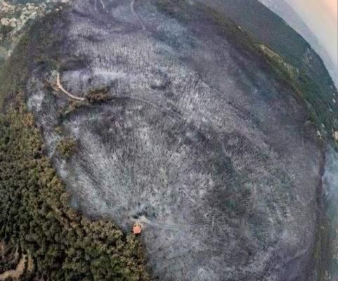تقرير لمجلس البيئة في القبيات عن مجريات الحرائق في منطقة عكار