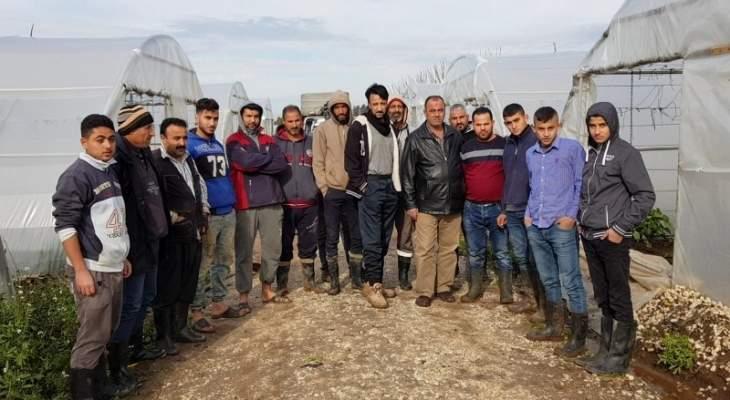 وقفة احتجاجية لمزارعي عكار ومطالبة بالكشف على الأضرار والتعويض