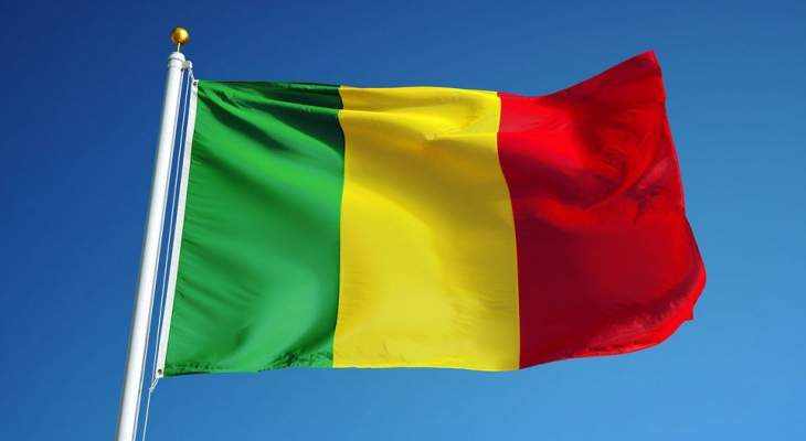 مقتل 20 مدنيا على الأقل في هجوم على قرية في وسط مالي