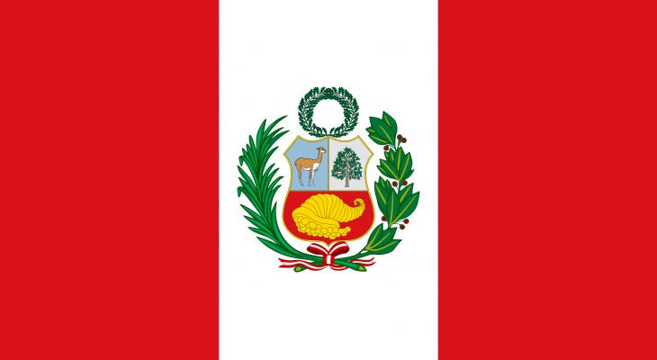 فوز مرشح اليسار الراديكالي بيدرو كاستيو بالانتخابات الرئاسية في البيرو