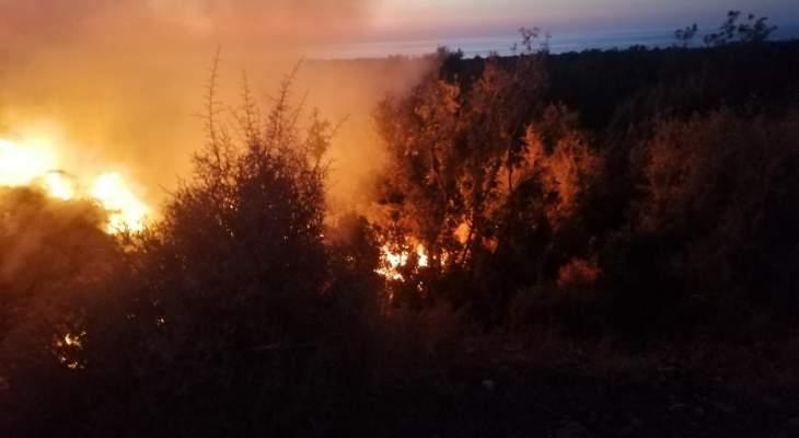 احراق نفايات طبية في منطقة الحريشة التابعة لدير سيدة البلمند