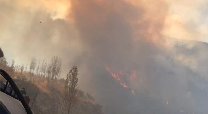دكاش ناشد قيادة الجيش بإرسال طوافات للمساعدة بإخماد حريق عين الدلبة