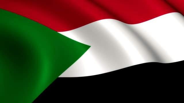 سلطات السودان ألغت تراخيص 24 منظمة محسوبة على نظام البشير وجمدت أرصدتها