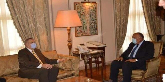 شكري وكوبيتش: ضرورة مواصلة جهود الحل السياسي للأزمة في ليبيا