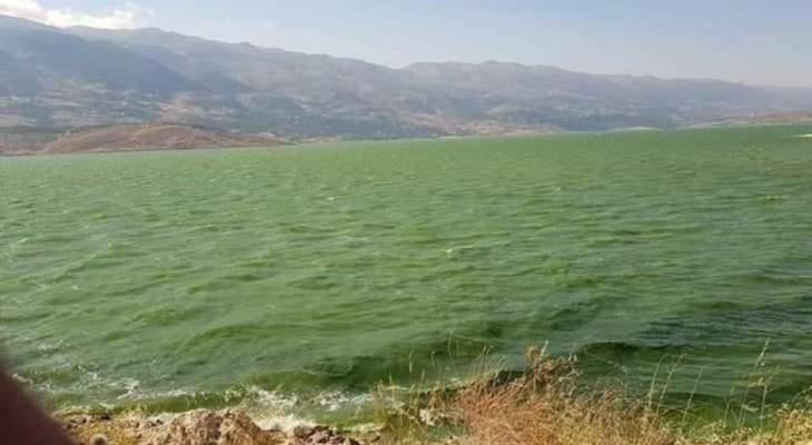 علوية: تحوُل لون بحيرة القرعون إلى الأخضر طبيعي بظل التلوث مع ارتفاع دراجات الحرارة