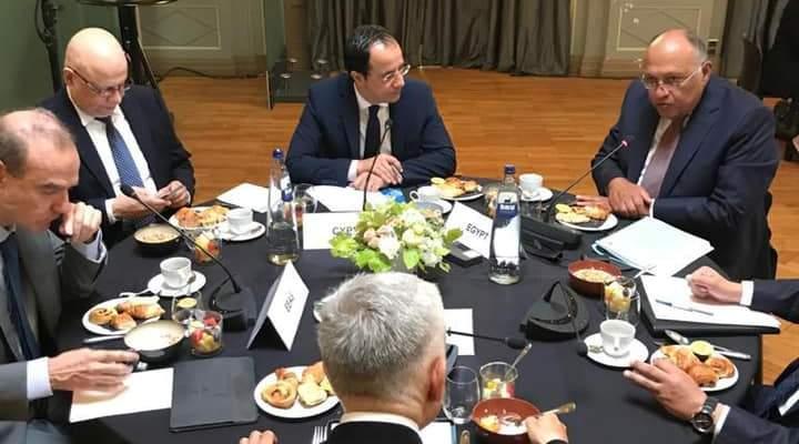 خارجية مصر: شكري أكد لوزراء الخارجية الأوروبيين ضرورة التوصل لاتفاق عادل حول سد النهضة