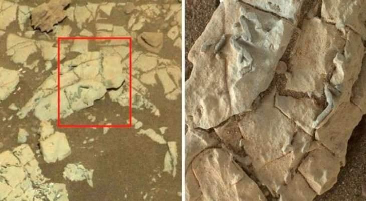 ناسا تنشر صورا تثبت وجود حياة على المريخ