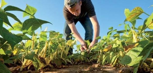"""نصر الله يعلن """"المقاومة الزراعية والصناعية"""": العنوان الأميركي أولوية"""