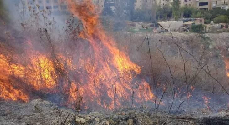 إخماد حريق على جسر الدمشقية بمرجعيون قضى على 50 دنما من أشجار السنديان