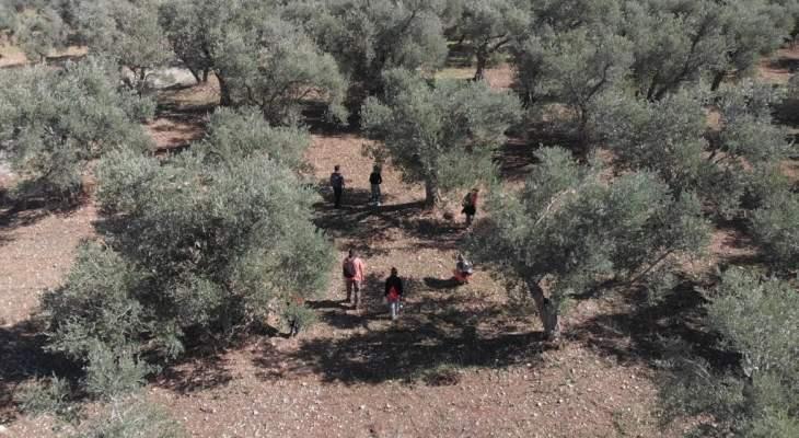 وزارة الثقافة تعرض اكتشافات أثرية جديدة في الكورة في اليوم الوطني للتراث