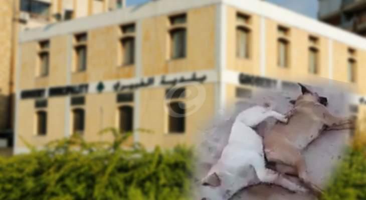 المسؤول عن مجزرة الغبيري معلوم وعناصر المفرزة ضحيّة وكبش فداء؟!