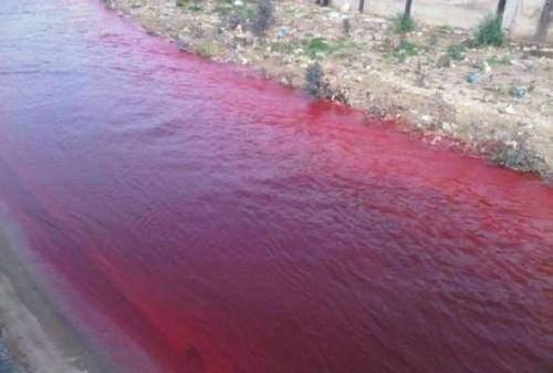 نهر بيروت احمر... ومن فشل بالتحقيق الاول تولى التحقيق مجددا!
