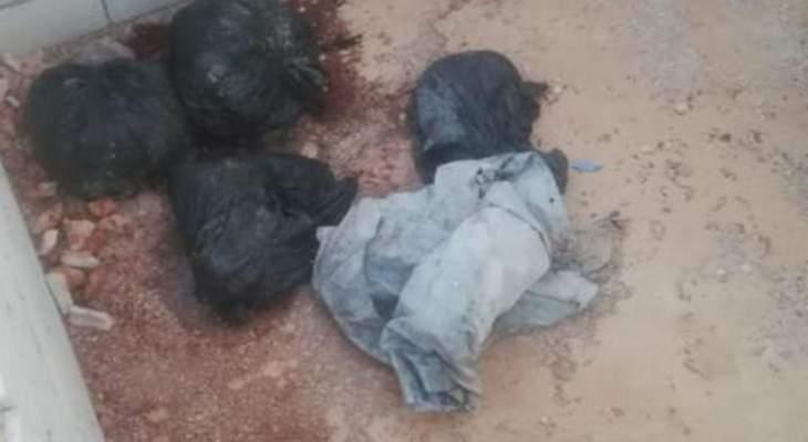 قوى الأمن: استقصاء البقاع كشفت ملابسات جريمة قتل أقدم مرتكبها على الإنتحار