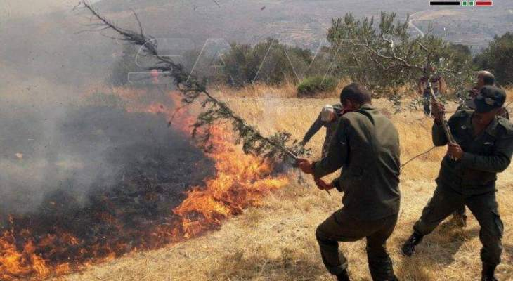 انضمام طائرة إيرانية للمشاركة في إخماد الحرائق بريف حماه الغربي