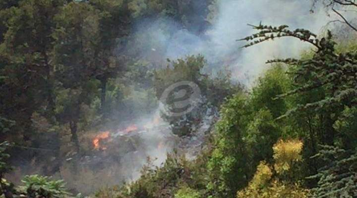 حريق كبير في أحراج الصنوبر ببلدة رأس الحرف
