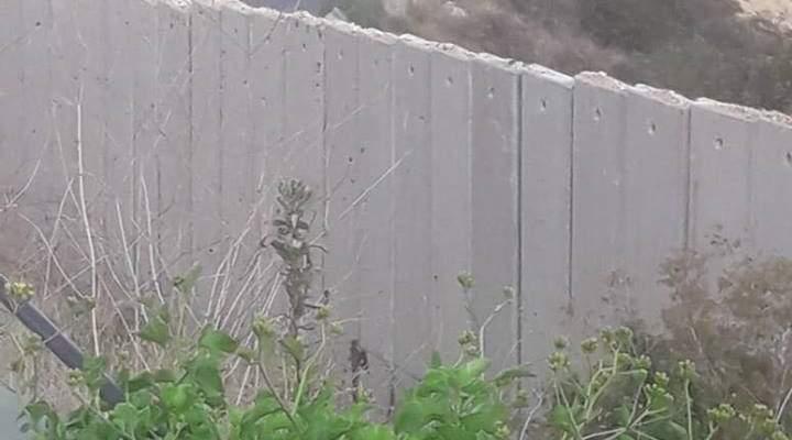 الجيش الاسرائيلي حاول خطف أحد الرعاة في منطقة مزرعة بسطرة
