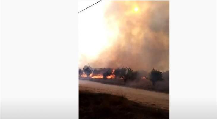 حريق بأعشاب يابسة في مرج بسري