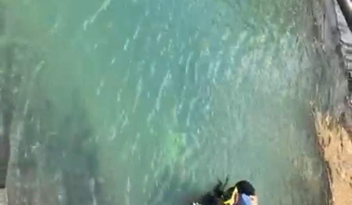 النشرة: انتشال جثة غريق سوري الجنسية من بركة في تربل البقاعية