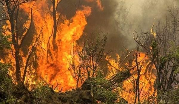 72 ألف حريق في الغابات الشاسعة في الأمازون