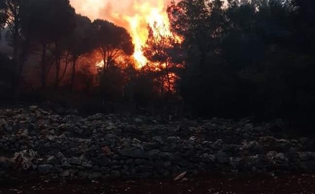 رئيس بلدية مزرعة الضهر: الحرائق تجددت اليوم ونحن بحاجة لطوافات متخصصة
