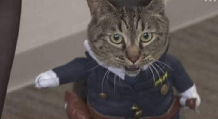 تعيين قطة مديرة شرطة تكريما لدورها في إنقاذ شخص