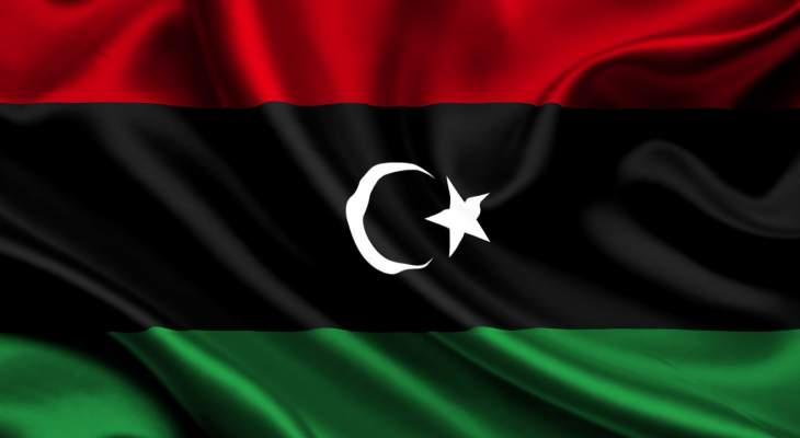 الأمم المتحدة: الأردن وتركيا والإمارات انتهكت حظر الأسلحة المفروض على ليبيا