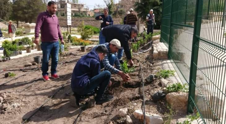جمعية التنمية البيئية نفذت حملة زرع عدد من الأحواض على مدخل قلعة بعلبك