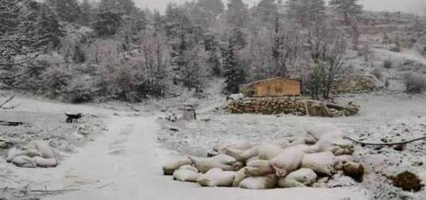 الثلوج تغطي جرود الضنية وتقطع طرقات وتلحق أضرارا بالمزروعات