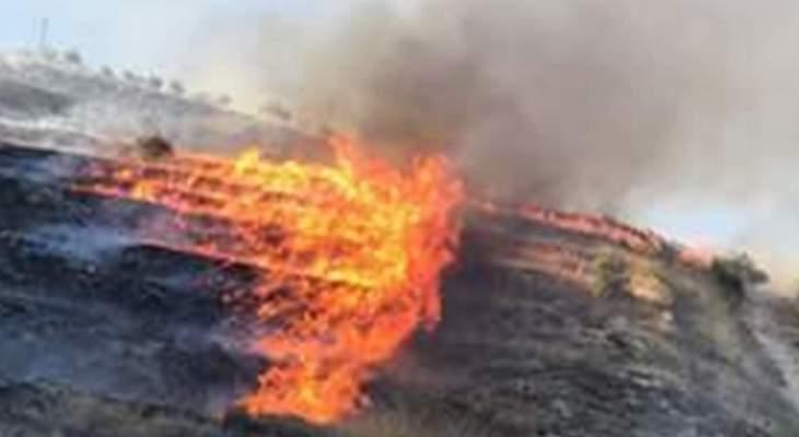 الدفاع المدني: إخماد 3 حرائق أعشاب في حارة مار الياس وتلال قصرنبا والروضة
