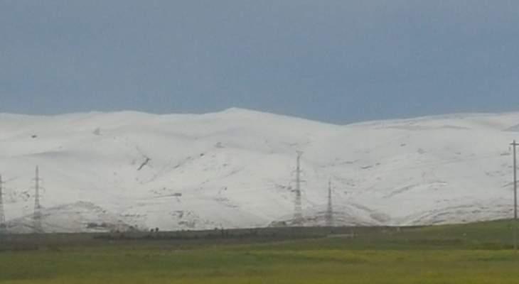 النشرة: هدوء العاصفة الثلجية في البقاع وتضرر المزروعات والخيم البلاستيكية