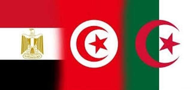 خارجيتا تونس والجزائر: لوضع حد لتدهور الأوضاع في ليبيا بالتعاون مع مصر
