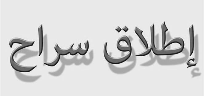 """معلومات الـ""""NBN"""": إطلاق سراح مغترب لبناني من خاطفيه في أبيدجان"""