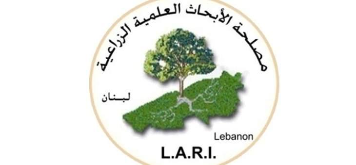 مصلحة الابحاث في تل عمارة: احتمال هطول أمطار موحلة بسبب الغبار صباح غد