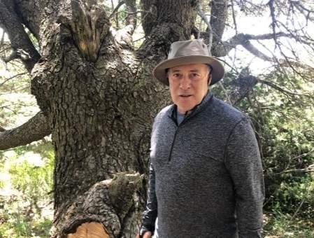 أبو سليمان: ماذا ينتظر مجلس النواب والحكومة لإقرار قانون إنشاء محمية طبيعية بغابة كرم شباط؟