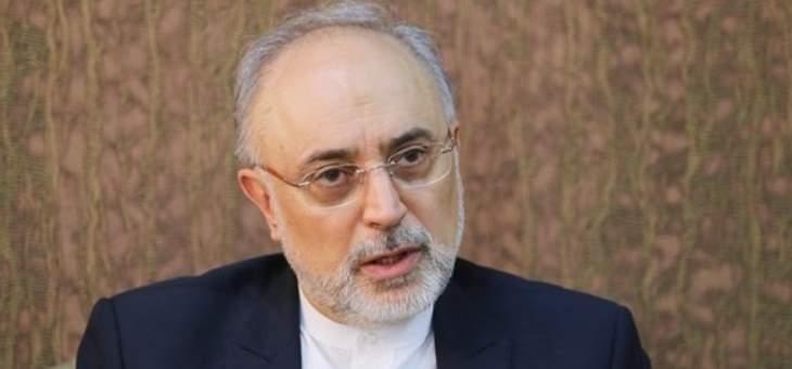 صالحي: القطاع النووي أثمر عن الاقتدار العلمي وتنمية التقنية والصناعة في ايران
